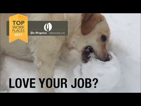 Love your job? Nominate it for a Top Workplaces award