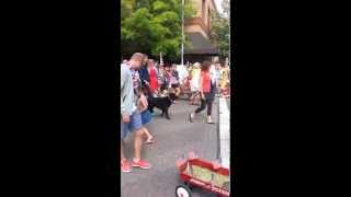 Pet Parade July 4th 2014 Bend OR