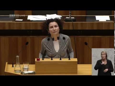 66. Nationalratssitzung - Alev Korun (Grüne)