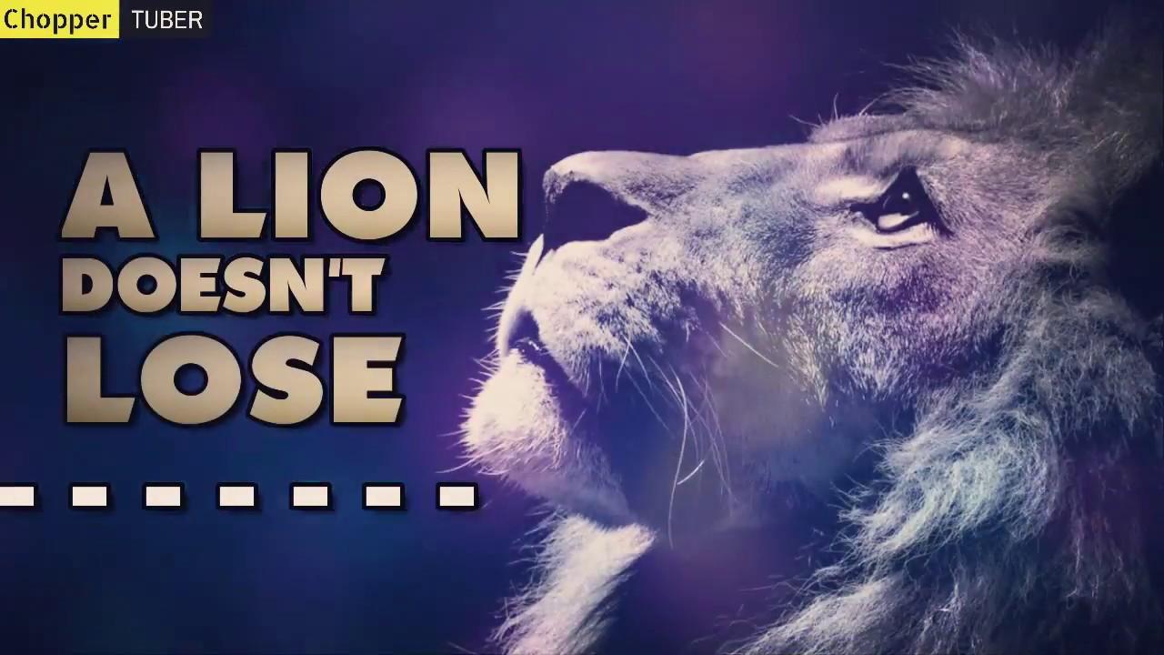 Just Watch Me Best Lion Attitude Status Video Youtube