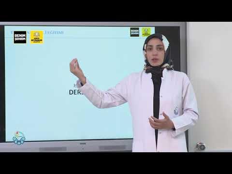 Türk İşaret Dili Eğitimi I Ders 4