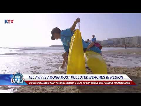 Tel Aviv Is Among Most Polluted Beaches In Region - Your News From Israel