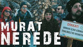 Gambar cover Murat Tehlikeli Ormanda Kayboldu! 🌲
