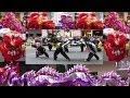 2014 ????? A  HK Dragon & Lion Dances Festival A