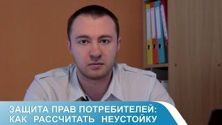 видео расчет неустойки по договору долевого