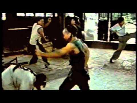 Xinhua Zhu in einem Kung Fu Film