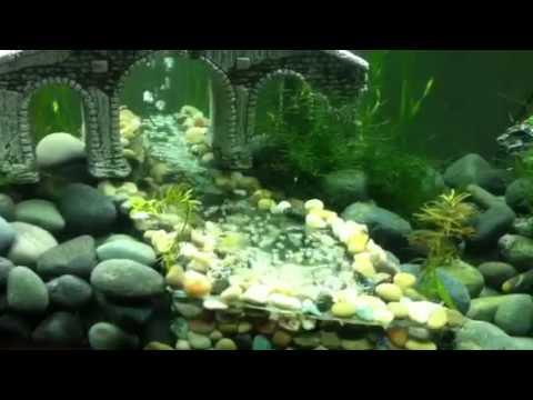 Aquarium Sand Waterfall Diy Using Powerhead Doovi