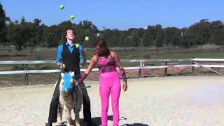 James BuSTAR - I'm Juggling On A Horse! (and A Pony)
