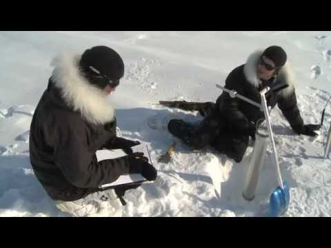 Magnetic North Pole - LIFE ON ICE!!
