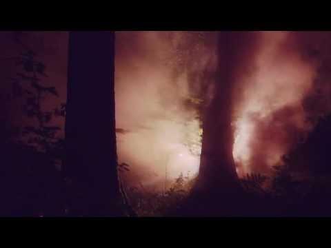 Junip - Walking Lightly (Official Video)
