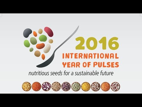 Pulses - Celebrating a Powerful Superfood