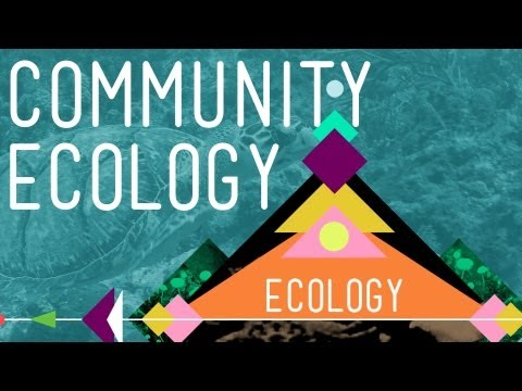 Community Ecology: Feel the Love - Crash Course Ecology #4