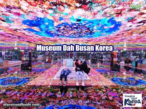 Museum Dah Busan Korea Largest Digital Art Museum