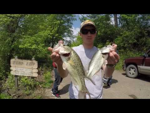 Wills Creek -- Mini Bass Tourney