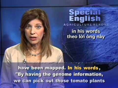 Phát âm chuẩn cùng VOA - Anh ngữ đặc biệt: Tomato Genome Sequenced (VOA)