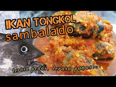 VIDEO RESEP DAN CARA MEMASAK TONGKOL SAMBALADO VIDEO MASAK IKAN TONGKOL VIDEO MASAK BUMBU BALADO