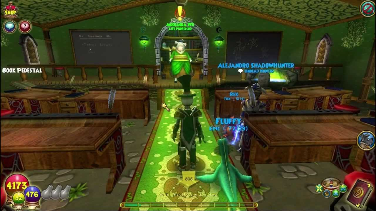 Wizard101: Completing the Gnome Pet Quest