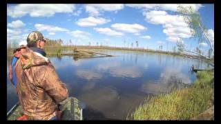 КЛЕВЫЙ БЕРЕГ. Река Лямин. Июль 2013 года.