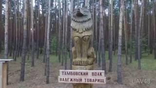 Мичуринск - аэросъёмка Тамбовской области
