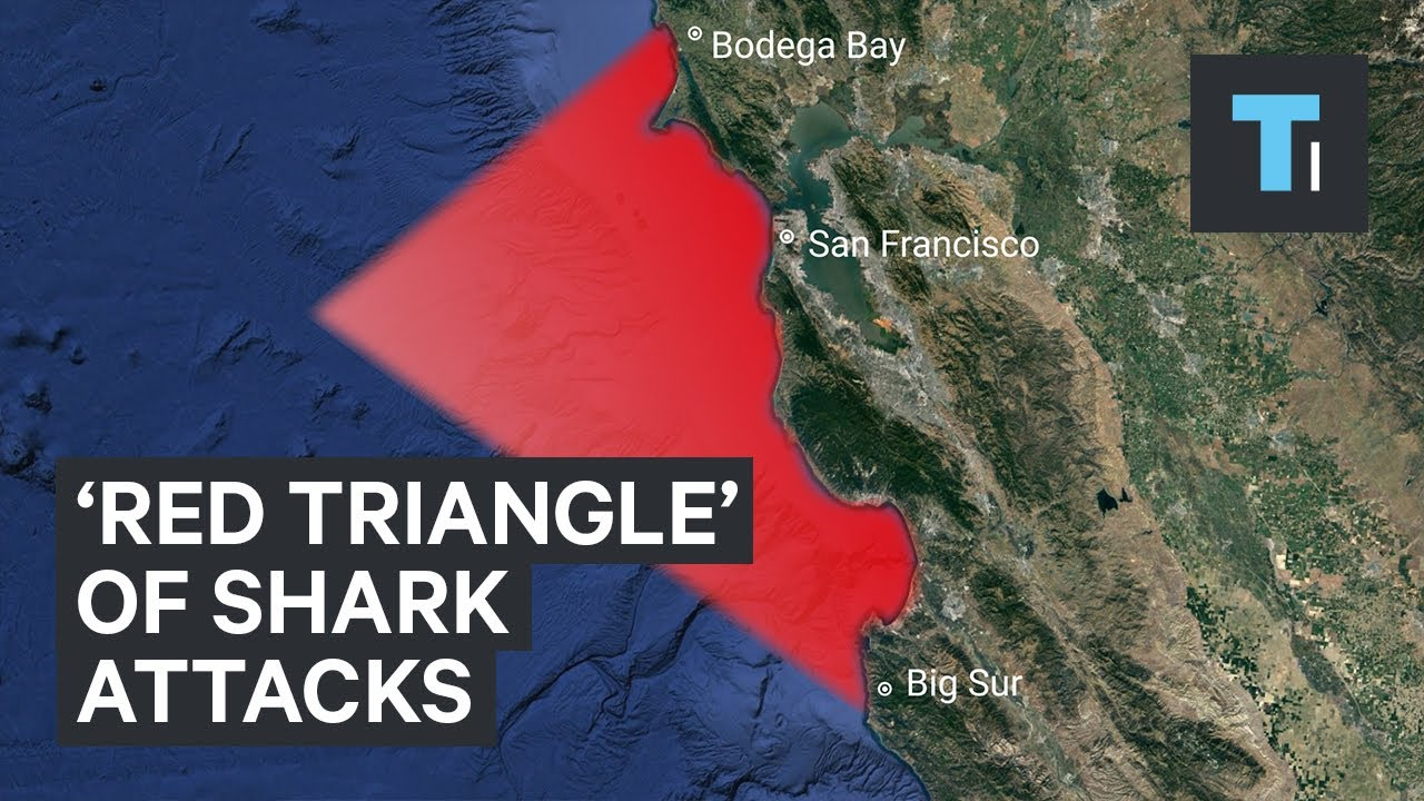 The 'Red Triangle' off the California coast is known for great white Infamous Map How Big Is on midtown madness map, driveclub map, pac-man world 2 map, dynasty warriors 8 map, wild arms 2 map, far cry map, transformers revenge of the fallen map, l.a. noire map, bionic commando map, mad max map, midnight club map, dying light map, jetpack joyride map, assassin's creed iii map, dragon age: inquisition map, arkham city map, the golden compass map, the legend of zelda map, defense of the ancients map,