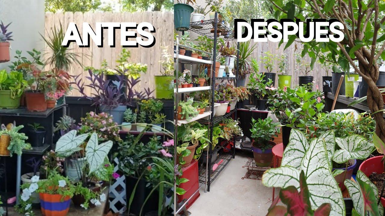Regalo Muebles De Jardin.Remodele Mi Jardin Con Nuevos Muebles Y Recibi De Regalo Nuevas Plantas Jardineria Jardincasero