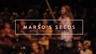 Marso's Seeds ❡ The Colab 2016