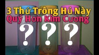 Để 3 Thứ Này Trông Nhà Quý Hơn Kim Cương 💎.PHAN HẢI channel