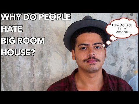 Why Do People Hate Big Room house?