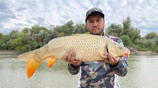 САЗАН 2021 ЛОВЛЯ САЗАНА ХЕ УХА БАРБЕКЮ НА ПРИРОДЕ ИЗ РЫБЫ рыбалка на Каратале в Талдыкоргане