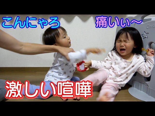 激しい喧嘩から仲直りまでの流れ!男女双子生後2歳1ヶ月!初めての粘土遊びMix twins From an intense quarrel to reconciliation