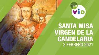 Fiesta Virgen de la Candelaria, Misa de hoy ⛪ Martes 2 de Febrero de 2021 – Tele VID