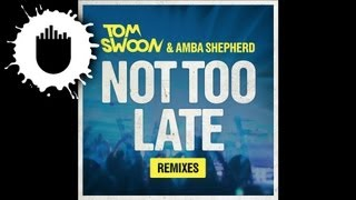 Tom Swoon & Amba Shepherd - Not Too Late (Bassnectar & PatrickReza Remix) (Cover Art)
