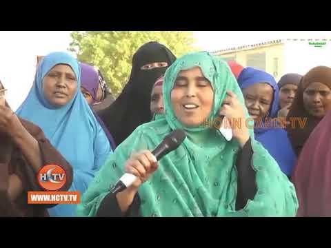 Banaan Bax ka dhacay Magaalada Berbera