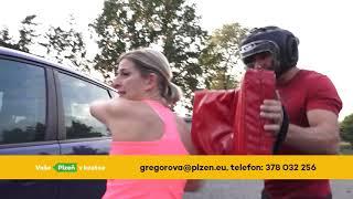 Plzeň v kostce (19.8.-25.8.2019)