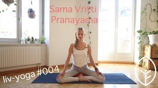 Pranayama - Sama Vritti Pranayama- Atemübung & Meditation - liv-yoga - video #004