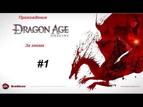 Прохождение игры Dragon Age Origins: за знатного гнома 1 серия