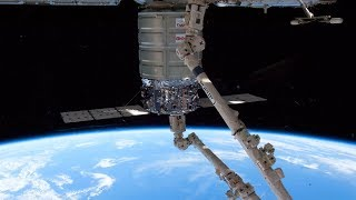 LIVE Northrop Grumman Cygnus CRS-11 Resupply Craft ISS Approach And Grapple
