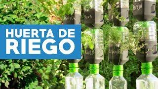 ¿Cómo hacer una huerta de riego por goteo con botellas recicladas?
