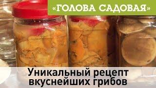 Голова садовая - Уникальный рецепт вкуснейших грибов