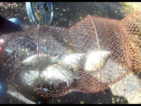 Осенняя рыбалка на карася. Ловля в сентябре на поплавочную удочку ...