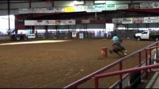 Strawberry 2nd Rodeo Athens, Tx - Barrel Horses For Sale At Gold Buckle Barrel Horses