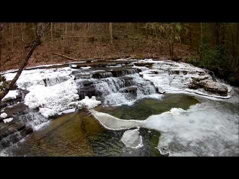 Visit to Camp Creek State Park and Forest