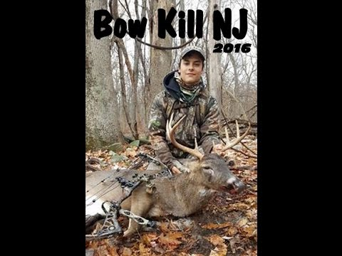 NJ Bow Kill 2016- Permit Bow