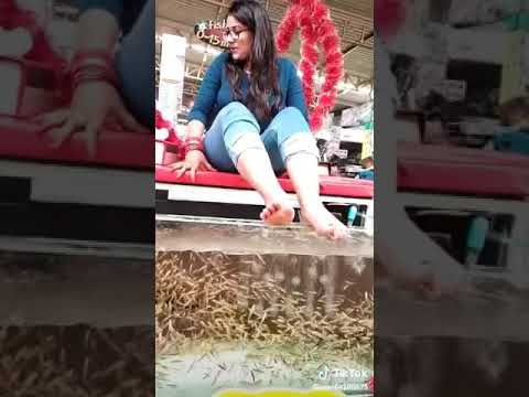 Buy Garra Rufa Fish Pedicure Setup Contact 8447174348