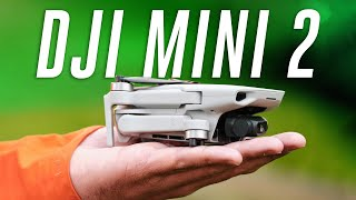 The best drone under $500 (DJI Mini 2 review)