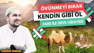 Mesnevi'den hikâyeler: Fare ve deve! - Kaptan değilsen de tayfa ol! / Kerem Önder