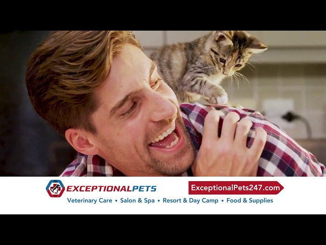 Exceptional Pets Chandler!