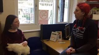 BBC SCHOOL REPORT 2018 - ANIMAL CRUELTY