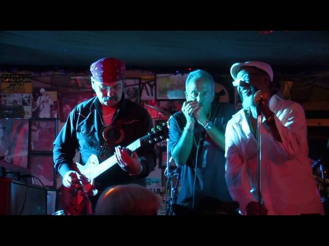 TRIBUTE - Live at Gip's Place