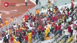 كيف احتفلت جماهير غينيا بهدف التعادل فى مصر